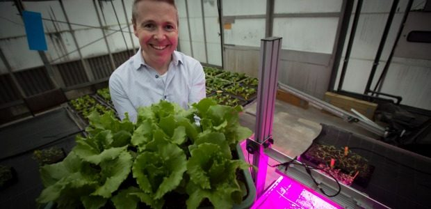 Seed funding to give university-based ideas a boost to market